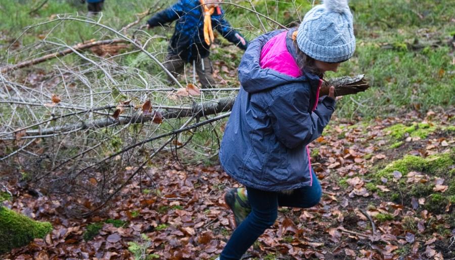 Aufbereitung des Waldgrundstücks zur Spielemöglichkeit
