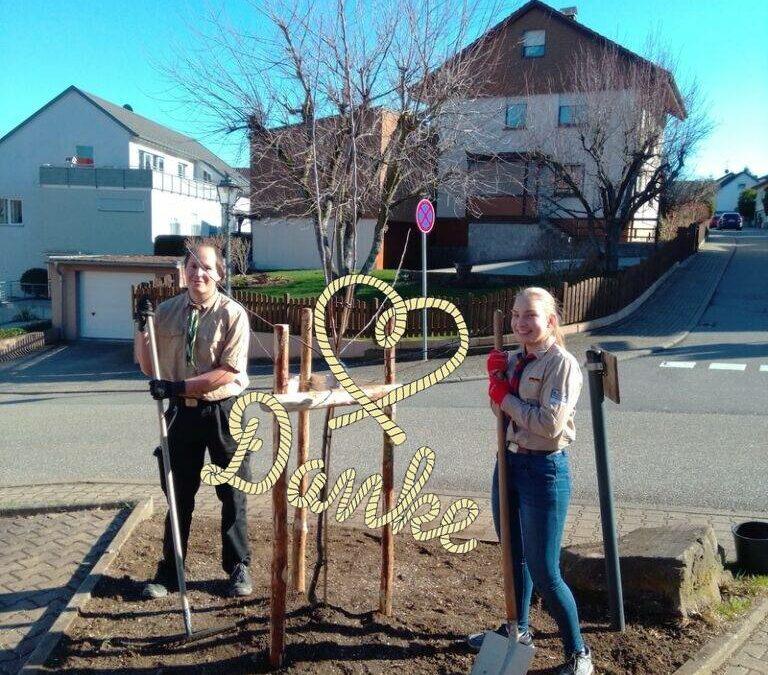 Neuer Baum fürs Pfadfinderhaus